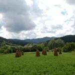 Vanatori-Neamt Nature Park