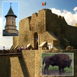 Touristic Tour in the town Targu Neamt and its surroundings