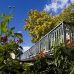 Touristic Guide of Piatra Neamt