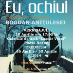 "The exhibition of the artist Bogdan Anitulesei at ""Lascar Vorel"" Art Galleries from Piatra Neamt"