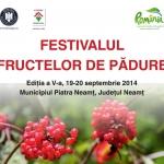 Berries Festival 2014