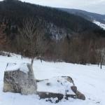 Dacian fortress – Bâtca Doamnei