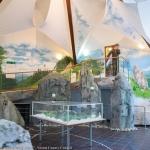 Visitors' Centre in Izvoru Muntelui