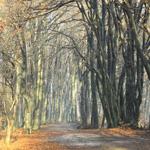 trekking-route-piatra-neamt-3-caldari