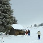 hiking-cheile-bicazului-ghilgos-plane