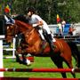 route-3-equestrian-piatra-neamt