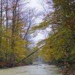 autumn-emotion-neamt-county