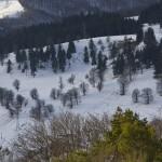 the-snow-festival-durau-2011