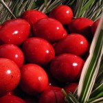 traditional-easter-products-neamt-2011