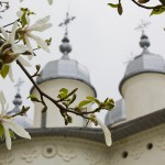 the-healing-spring-horaita-monastery