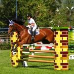 equestrian-cup-piatra-neamt-2011