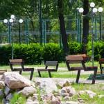 summer-school-piatra-neamt-2011
