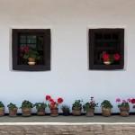 08-atractii-turistice-targu-neamt-mai-2014