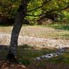 Autumn toward Secu and Sihastria 2011