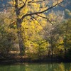 Autumn toward Bicaz 2011