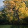 Autumn toward Bicaz 2011