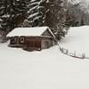Barnadu winter 2013