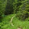 Touristic trails on Ceahlau Mountain