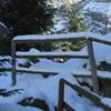 Winter Season in Cheile Sugaului