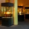 Cucuteni Museum