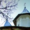 Dumbravele Monastery from Neamt County