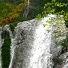 Romanian Tourism - Duruitoarea Waterfall