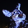 Easter Lights in Piatra Neamt