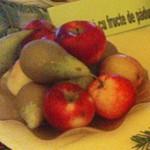 Romanian Tourism -  The Festival Fructele de Padure 2008