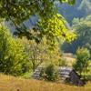 Garcina rural area