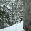 Hiking Cheile Bicazului: Lapos Canyon
