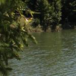 Romanian Tourism - Lake Cuiejdel