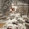 Piatra Neamt winter jan 2013