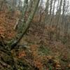 Trekking Route to Cernegura Hill - Piatra Neamt