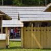 Summer School, Piatra Neamt 2010