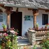 Vasile Gaman museum