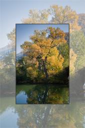 Autumn scenes toward Bicaz