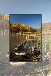 Autumn at Cuejdel Lake 2012