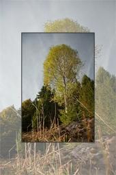 Autumn in Bicajel Valley