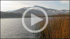 The Lake Pangarati